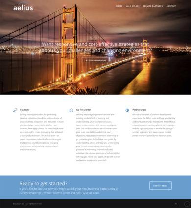 Wordpress Development for Aelius Consulting