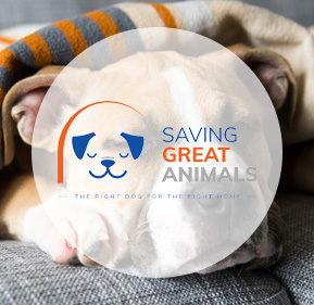 savinggreatanimals.org